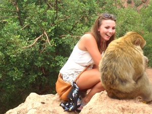 The Monkeys of Morocco